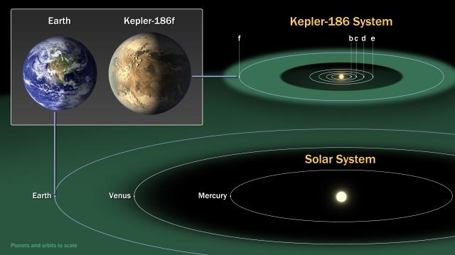kepler186f system