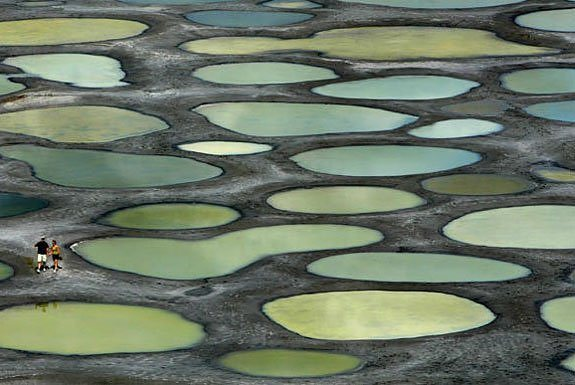 Spotted Lake of British Columbia